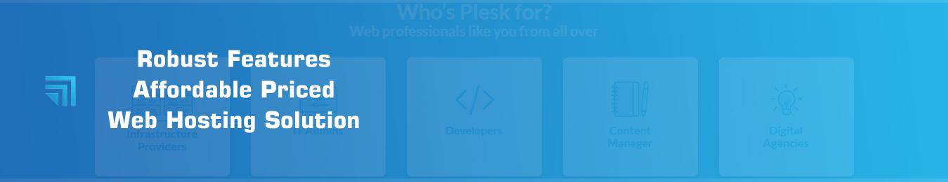 Plesk Web Hosting Banner